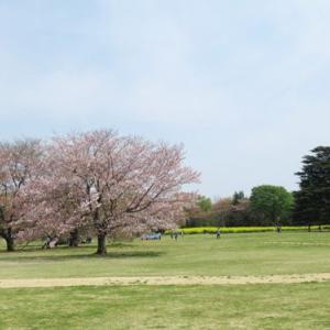 昭和記念公園 フラワーフェスティバル その2