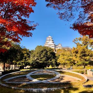 本日日本晴れ  姫路城にて