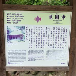 鎌倉巡り 覚園寺