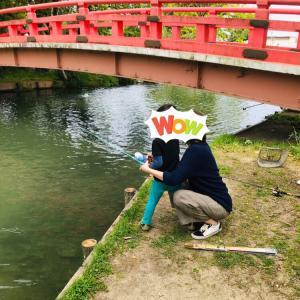 【岐阜西濃~名古屋レジャー】 ぼたん園~金生山~チベット仏教寺院まで