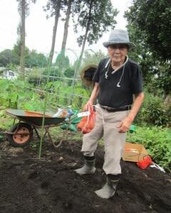 ジャガイモ植えました