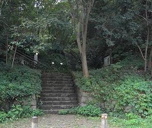 川崎市長者穴横穴墓群