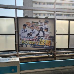 横浜ベイスターズ