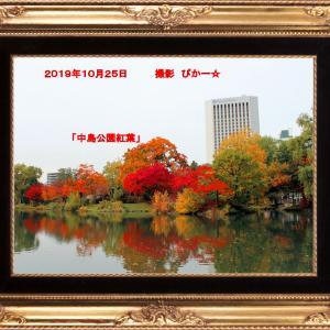 昨日の中島公園の紅葉を・・・・
