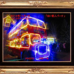 「白い恋人パーク」~中庭を彩る幻想的なイルミネーション~(パート2)