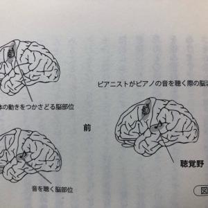 ピアニストの脳って…