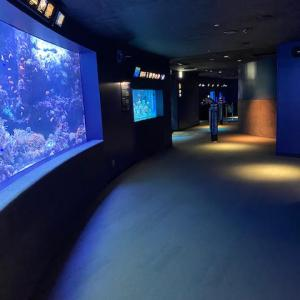 """加賀「 池袋に来たら""""サンシャイン水族館""""へ 」"""