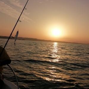 釣行(11/23_玄界灘)デカマサ狙ったが、、、厳しい、、、