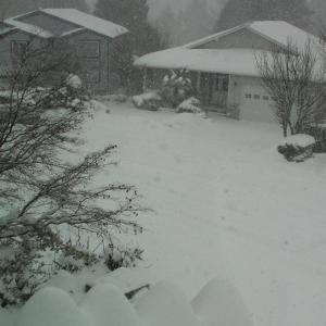 雪の日のまさか!のご近所付き合い