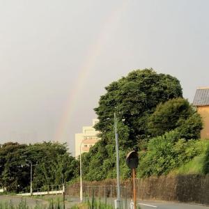 虹のむこうに 福岡タワー