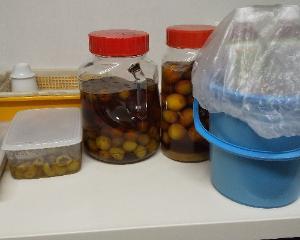 今年の梅仕事 おいしいさし酢 そして絶対失敗しない梅干しの作り方