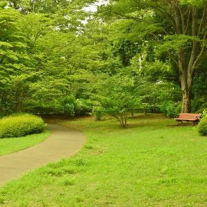 国営昭和記念公園(東京都立川市)2018年6月 1