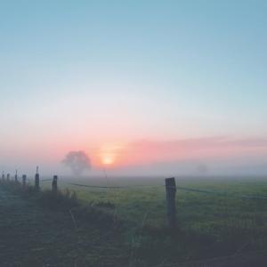 朝方生活を再度始める