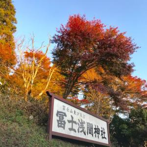 東口本宮富士浅間神社の湧き水と富士山と縁結びのモミの木