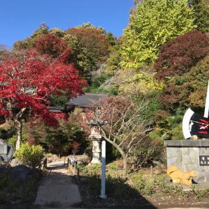 金太郎生誕の地 金時神社