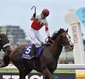 スワーヴリチャードがアイルランドの天才騎手に導かれ、1年7か月ぶりの勝利を果たす!