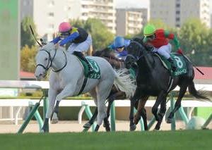 白毛馬で初めてのJRA芝重賞勝ち!ブチコの子・ソダシが札幌2歳王者に輝く。