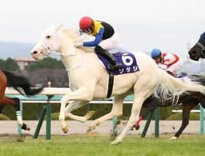 白毛馬から初めてのGⅠホース誕生!ソダシが4連勝で2歳女王に!