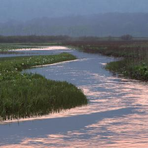 ♪夕映え~川の水鏡?♪