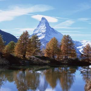 高峰の秋~落葉直前の美♪