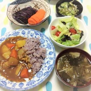 今日のごはん(カレーライス&レタスと海苔のサラダ&ぬか漬け)