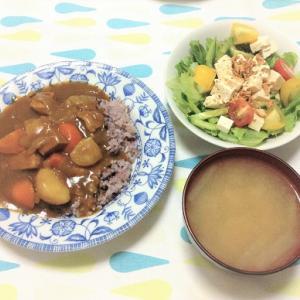 今日のごはん(カレーライス&豆腐サラダ)