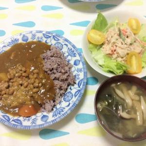 今日のごはん(納豆カレー&大根とツナのサラダ)