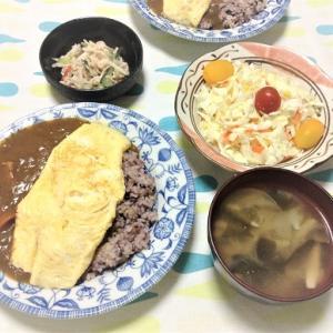 今日のごはん(チーズオムレツカレー&コールスローサラダ)