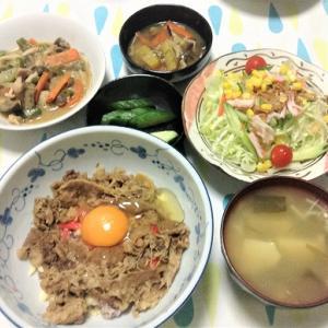 今日のごはん(チーズ生卵牛丼&サラダ)