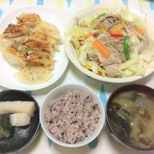 今日のごはん(肉野菜炒め&餃子)