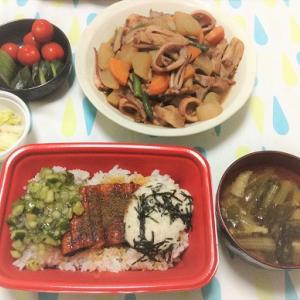 今日のごはん(松屋のうなぎ三色丼&イカと大根の煮物)