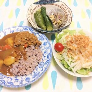今日のごはん(納豆カレー&大根サラダ)
