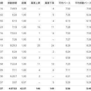 おかやまマラソン3-ゴール