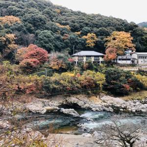 愛知県春日井市、定光寺の道樹山をトレラン!
