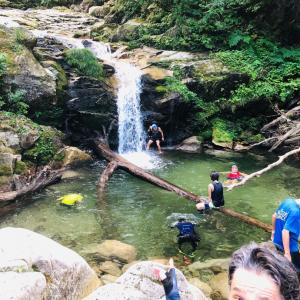 虫がぶんぶん!日本二百名山の武奈ヶ岳をトレイルラン