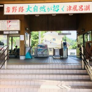 関西最高の秘境!大台ケ原を絶景ハイキング
