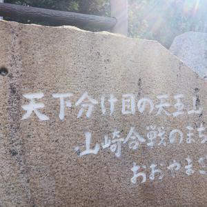 フジバカマ!なんやかんや京都西山古道トレイルラン