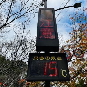 山の家はせがわハンバーグと京都北山トレイルラン