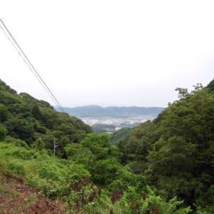 久しぶりに高倉山に登る!の巻