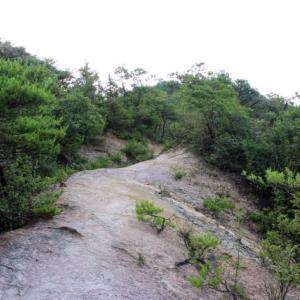 熊山登山 弓削コースを超特急!の巻