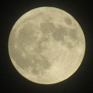 ストロベリームーン(6/25午前3時40分が満月)