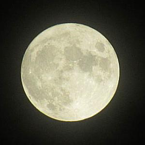 写真 満月