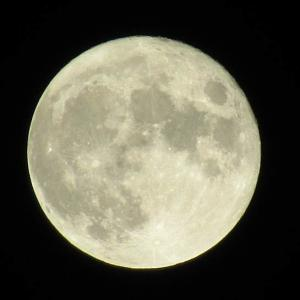 中秋の名月 十五夜 満月