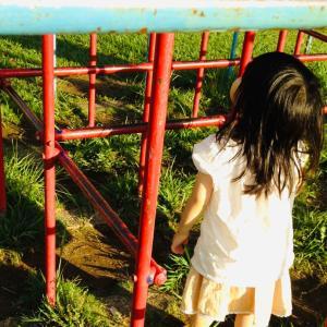 モンテッソーリ教師養成講座乳幼児コース(0歳〜3歳)への想い