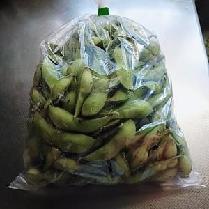 どら豆の枝豆