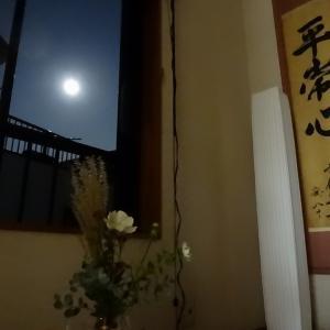 今晩の夕飯は月を見ながら