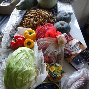 実家からの野菜2021 第六弾 落花生、カボチャ、唐辛子、キャベツ、パプリカ、ネギ、サツマイモ、菊、ホウレンソウ