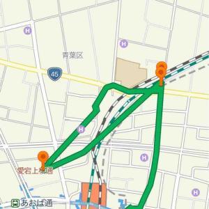 【痛風中の東北旅行】3ヶ月ぶりに仙台で寿司