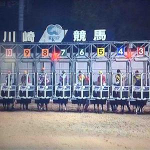 二日続けてTVKで川崎競馬を楽しむ!