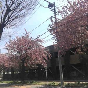 ドラクエ&ラーメンWalker2ニ〜四日目
